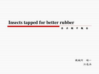 Insects tapped for better rubber