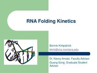 RNA Folding Kinetics