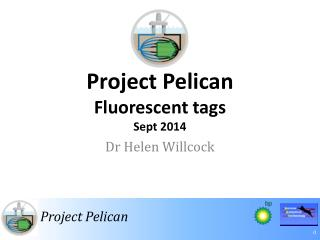 Project Pelican  Fluorescent tags Sept 2014
