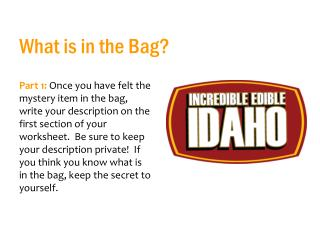 What is in the Bag?