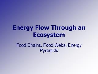 Energy Flow Through an Ecosystem