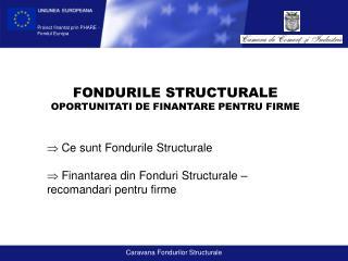 FONDURILE STRUCTURALE OPORTUNITATI DE FINANTARE PENTRU FIRME  Ce sunt Fondurile Structurale