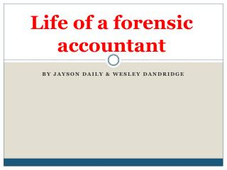Life of a forensic accountant
