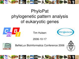 PhyloPat phylogenetic pattern analysis of eukaryotic genes