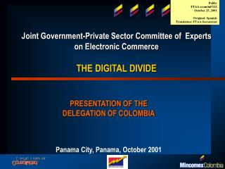 Joint Government-Private Sector Committee of  Experts on Electronic Commerce THE DIGITAL DIVIDE