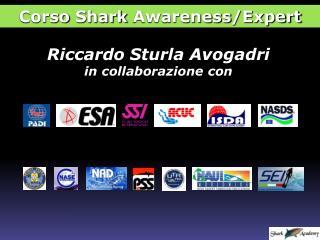 Riccardo  Sturla Avogadri in collaborazione con