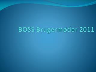 BOSS Brugerm der 2011
