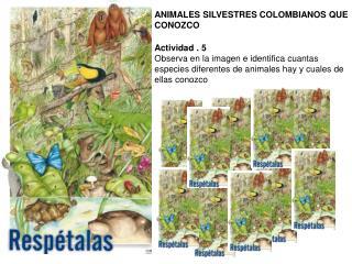 ANIMALES SILVESTRES COLOMBIANOS QUE CONOZCO