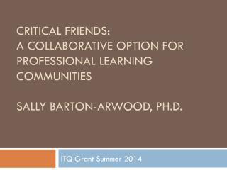 ITQ Grant Summer 2014