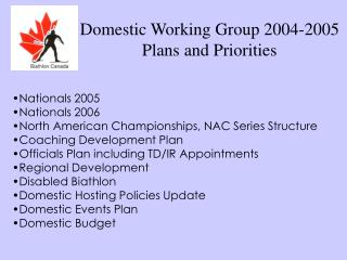 Domestic Working Group 2004-2005 Plans and Priorities