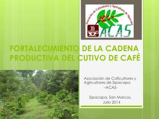FORTALECIMIENTO DE LA CADENA PRODUCTIVA DEL CUTIVO DE CAFÉ