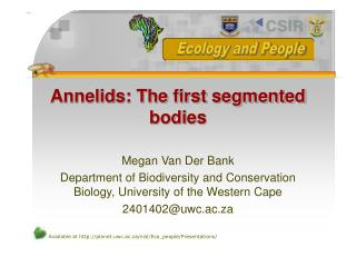 Annelids: The first segmented bodies