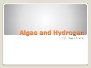 Algae and Hydrogen