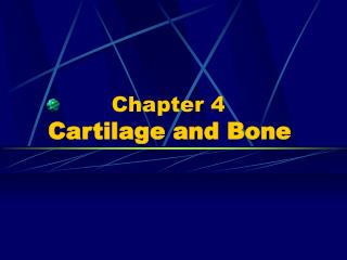 Chapter 4    Cartilage and Bone