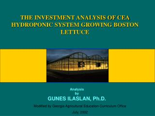 THE INVESTMENT ANALYSIS OF CEA HYDROPONIC SYSTEM GROWING BOSTON LETTUCE