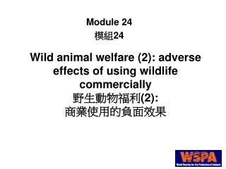 Wild animal welfare (2): adverse effects of using wildlife commercially 野生動物福利 (2): 商業使用的負面效果