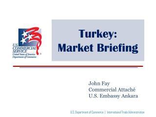 Turkey:  Market Briefing