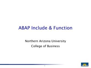 ABAP Include & Function