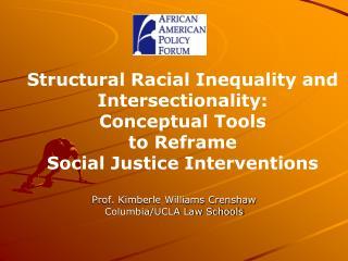 Prof. Kimberle Williams Crenshaw Columbia/UCLA Law Schools