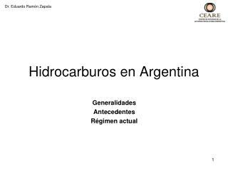 Hidrocarburos en Argentina