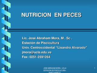 NUTRICION  EN PECES