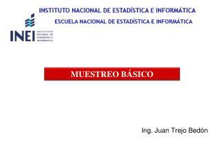 Ing. Juan Trejo Bedón