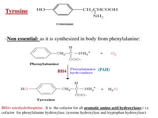 Tyrosine Non essential:  as it is synthesized in body from phenylalanine: