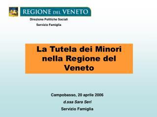La Tutela dei Minori nella Regione del Veneto