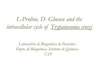 L-Proline, D- Glucose and the intracellular cycle of  Trypanosoma cruzi