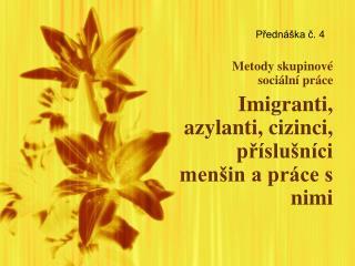 Metody skupinové  sociální práce Imigranti, azylanti, cizinci, příslušníci menšin a práce s nimi
