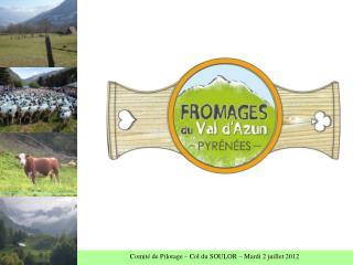 Comité de Pilotage  Création d'une marque fromagère COL DU SOULOR 2 JUILLET 2012
