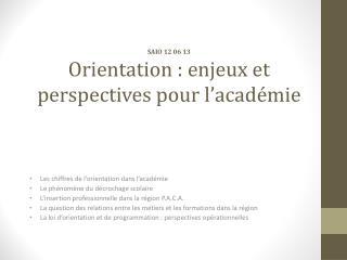SAIO 12 06 13 Orientation : enjeux et perspectives pour l'académie