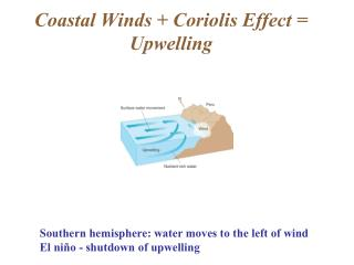 Coastal Winds + Coriolis Effect = Upwelling