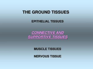THE GROUND TISSUES EPITHELIAL TISSUES CONNECTIVE AND SUPPORTIVE TISSUES MUSCLE TISSUES
