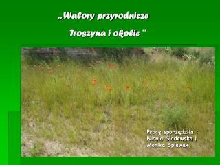 ,, Walory przyrodnicze              Troszyna i okolic ''