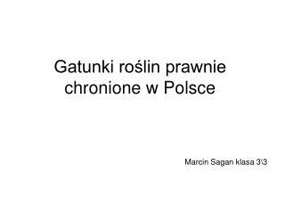 Gatunki roślin prawnie chronione w Polsce