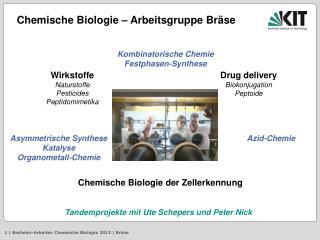 Kombinatorische Chemie Festphasen-Synthese