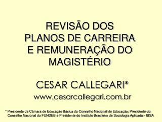 REVIS O DOS PLANOS DE CARREIRA E REMUNERA  O DO MAGIST RIO