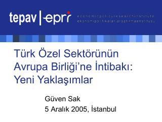 Türk Özel Sektörünün Avrupa Birliği'ne İntibakı : Yeni Yaklaşımlar