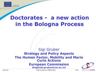 Doctorates -  a new action in the Bologna Process