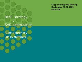 BEST strategy / SAD optimization