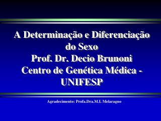 A Determina��o e Diferencia��o do Sexo Prof. Dr. Decio Brunoni Centro de Gen�tica M�dica - UNIFESP