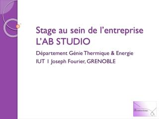 Stage au sein de l�entreprise L�AB STUDIO