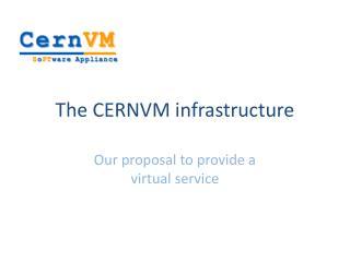 The CERNVM infrastructure