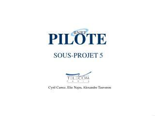 PILOTE  SOUS-PROJET 5