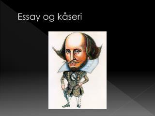 Essay og kåseri