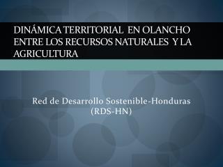 Dinámica Territorial  en Olancho entre los Recursos Naturales  y la Agricultura