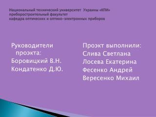 Руководители проэкта: Боровицкий В.Н. Кондатенко Д.Ю.