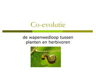 Co-evolutie