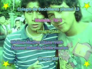 Colegio de Bachilleres plantel 13 Materia: TIC 3 Integrantes:  Molina Medina Diana Iveth